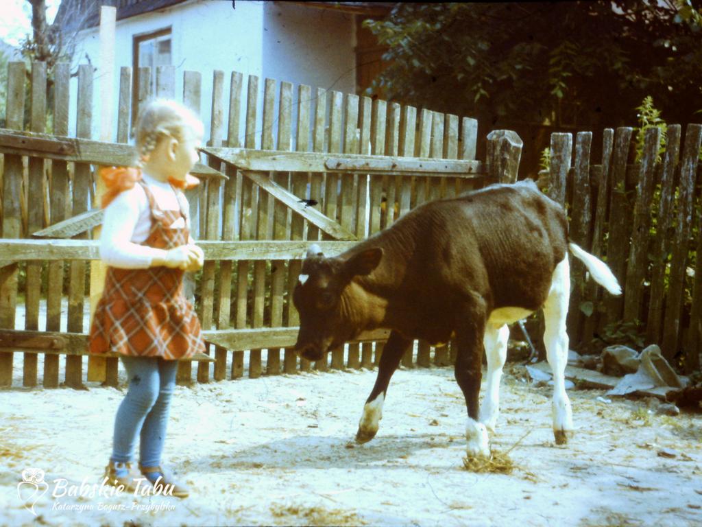 Idealne dzieci Katarzyna Bogusz-Przybylska artecoaching artecoach warszawa